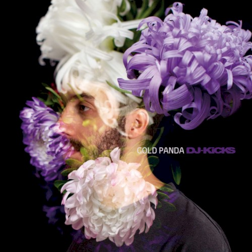 Gold Panda You Artwork
