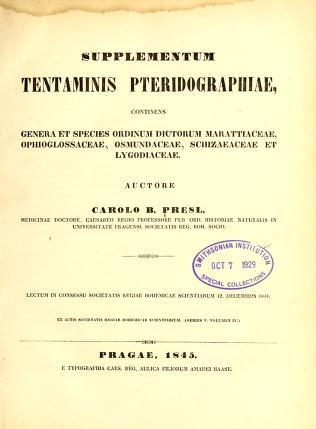 Cover of: Supplementum tentaminis pteridographiae | Karel Bořiwog Presl