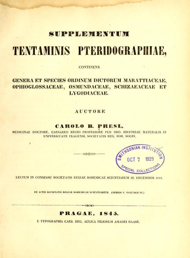 Supplementum tentaminis pteridographiae by Karel Bořiwog Presl